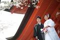 2015年4月4日 ひろよしさん・ゆかさん 厳島神社〜錦水館