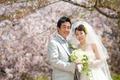 2011年4月17日 てつやサン・ゆりこサン シェ・ヤマライ