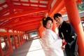 2014年3月7日 たかひろさん・やよいさん 厳島神社〜錦水館